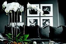 Photography in Interior Design / We love seeing photography as a main design feature in interior decor. Photography as art is a beautiful thing.