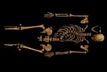 Richard III / A collection of all the news stories Current Archaeology has written on Richard III, and the discovery of this last Plantagenet king. / by Current Archaeology