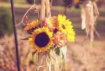 Fall-ing In Love / Perfect accents, decor, and color schemes for your fall wedding!