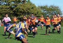 #MoMoutaineers: Men's Rugby / Discover Varsity Men's Rugby team in action! For more information about Mohawk's varsity sports teams, visit http://www.mohawkcollege.ca/student-life/athletics/varsity-teams.