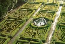 - jardim encantado -