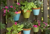 Home - Garden Inspiration
