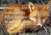 ANIMAL CAUSES | RIGHTS | QUOTES | FACTS  :) / ANIMAL CAUSES, RIGHTS, QUOTES, AND FACTS. LET'S HELP SPREAD THE WORD .