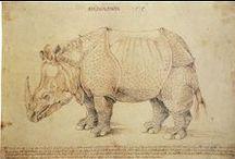 Albrecht Durer (1471-1528) / Немецкий живописец и график, признан крупнейшим европейским мастером ксилографии. Один из величайших мастеров западноевропейского Ренессанса. Первый теоретик искусства среди североевропейских художников. Основоположник сравнительной антропометрии.