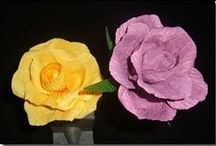 Flores / natureza