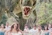 Wedding Photography Done Right