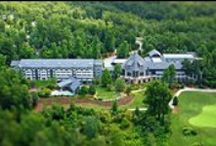 Brasstown Mothers Day Show / A stunning resort nestled within the majestic beauty of Brasstown Valley in Young Harris, GA EVERY MAY http://www.robinrobertspromotions.com/brasstown-mothers-day-2015.php  Invitation to Pin: Email cindy@pinebranchdesigns.com with the link to your account and you will be sent an invitation to join us.