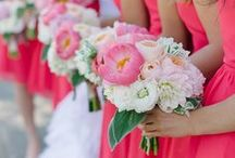Matrimonio Estivo: Rosa anguria - Watermelon Pink Summer Wedding