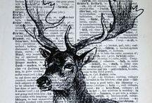 Oh,deer •