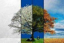 {Seasons}