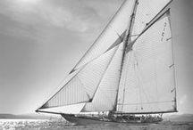 Sails / by Kiko Nuez