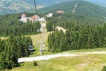 Travel / Ilgaz Mountain