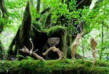 Driftwoodart 流木 流木アート / 「流木 を通して、自然と人々とのつながりを豊かに」   オリジナル作品です。 http://ryuboku-art.net/