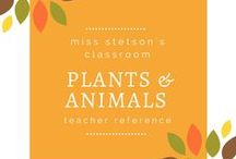 Plants / Find free products, priced products, sale announcements, and articles posted on the blogs created by teacher-sellers at Teachers Pay Teachers and on teacher websites. Email me at missstetsonclassroom@gmail.com if you would like to join the TpT Pinterest Collaborative Boards. Feel free to post up to three blog pins per day.