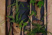 Greens arrangement