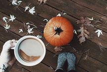 → Fall