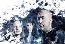 Staind / by Barbara Fetherlin Gray