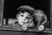 Elephantastic!!