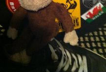 george da road monkey / adventures of a Travelling monkey and songwriter
