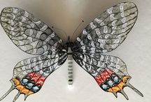 Quilled butterfly / My hobby