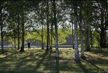 Erikas hus: Livet på landet / Foton från byn och längs älven. #kulturlandskap #landsbygd #Lågbo #Bredforsens #naturreservat #Dalälven #Gästrikland