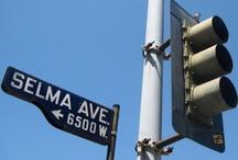 Heel veel Selma's / More than just a name...