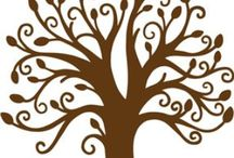 Favorites~C~ / by Cindy Simpson