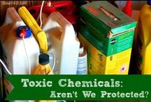 Avoiding Toxins / by Betsy (Eco-novice)