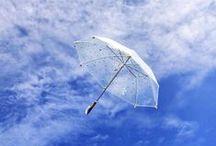 Paraplu's / Een bord vol met #paraplu's. #umbrella