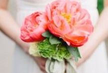 Vibrant Flowers and Their Meanings / Sometimes it is fun to think about what flowers used to mean. Maybe it will help you decide what to pick out which flowers to use in your arrangements, or encourage you to come up with you own. Learn more here: http://www.brideandblossom.com/blog/traditional-meaning-flowers / by Bride & Blossom
