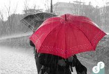 Ontwerp je eigen Paraplu™ / Wil je als zelfstandige trainer succesvol zijn, dan is het belangrijk dat jij je eigen unieke Paraplu™ hebt. Deze Paraplu™ zorgt namelijk voor een herkenbaar en herhaalbaar trainingsaanbod.