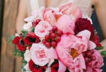 Intoxicating Poppies / Looking at inspiring poppy bridal bouquets and how poppies are used in wedding flowers. / by Bride & Blossom