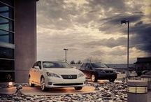 #LexusLove / Lexus makes the car. Mungenast makes the difference.