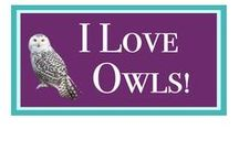I Love OWLS / Owls have long been my favorite bird. There is something so mysterious and wise about them. We have a great horned owl that hoots at us every night. I consider them my good luck totem!