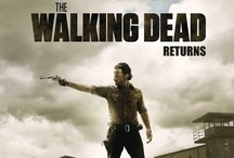 The Walking Dead - My Addiction / Can't wait for the new season (something must be wrong with me) / by Patti Matthews Hammer