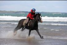 Beach Riding / Beach riding on Tullan Strand, Bundoran, Co Donegal, Ireland