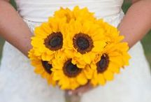 Summer Weddings / It's that time of year again when we have weddings to go to every weekend. Here's some inspiration to make sure yours stands out...