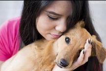 Dog <3 / Nesta pasta, estão todos os nossos dogs  O Oyama, a Yuki e a Mooka