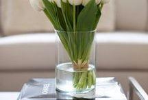 : Tulips :