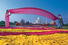 COLORS OF INDIA / by Goldie Design