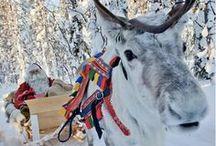 Lapland / Laponia