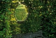 Green garden / Bara grönt
