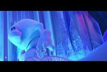 Marshmallow ❆