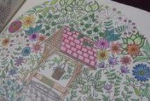 Meu Jardim Secreto