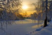 Winter Wonderlands / The most beautiful places to spend the winter.