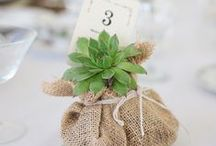 Wedding Favours / A collection of our favourite wedding favours. We love the rustic wedding look and eco friendly wedding stationery. Take a look at our whole collection for ideas and wedding inspiration.