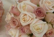 Цветы / Самые нежные и восхитительные