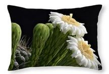 Throw Pillows for sale on Fine Art America / Matching throw pillows now available for all of my prints!