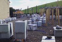 Beekeeping 2015 / Beekeeping Bees and Queen Rearing