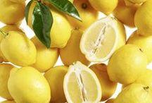 Les bons citrons Mon Marché Plaisir / Notre engagement Producteur-Commerçant c'est vous proposer de bons citrons cultivés par nos 578 producteurs partenaires.